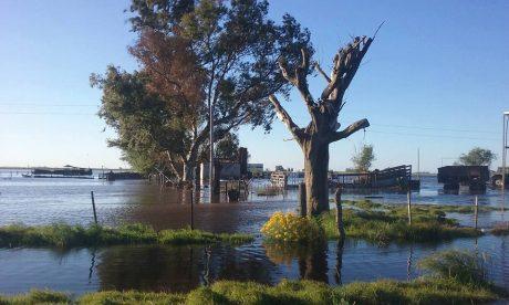Inundaciones Buenos Aires y La Pampa