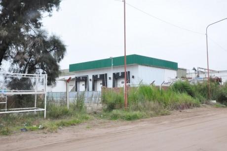 Trenque Lauquen - Ex Indio Pampa