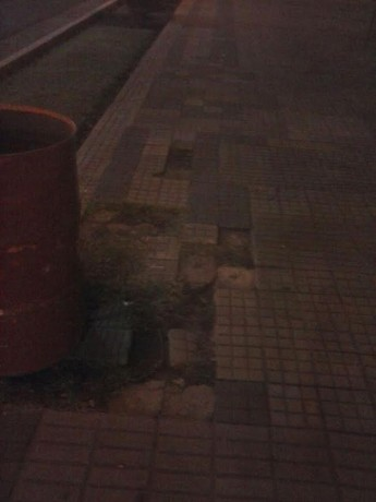 Trenque Lauquen - Foto suministrada por el propio concejal Sotullo
