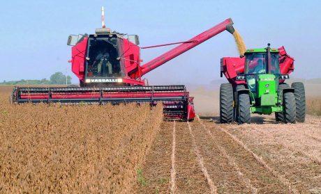 Máquinas cosechando
