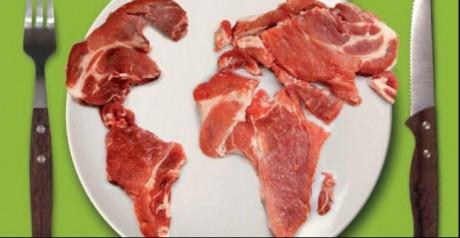 Carne exportación