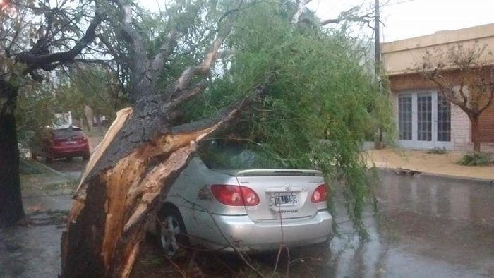 Una tormenta generó destrozos en ciudades del centro oeste bonaerense