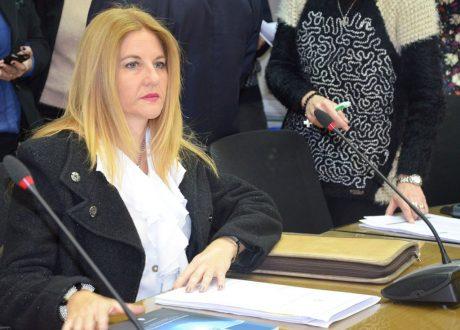 Brezzo, Marita Diputada Nacional por Córdoba