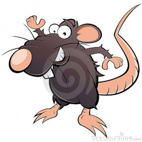 Rata (chistosa)