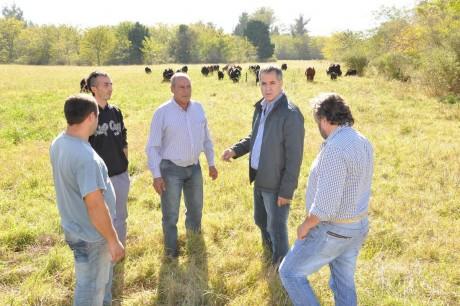 Rodríguez, Topo con productores
