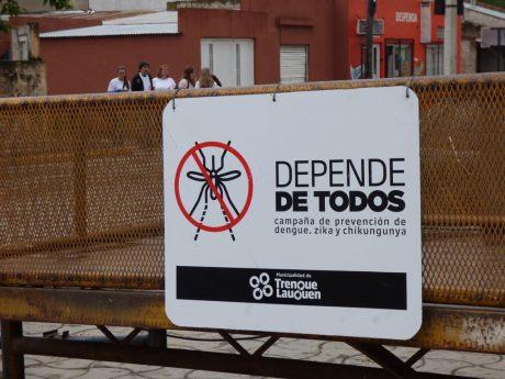 Trenqje Lauquen campaña contra el dengue