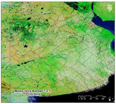 Foto satelital publicada por el intendente de Rivadavia en su cuenta de Twitter, este domingo