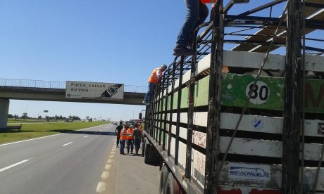 Transporte de carga hacienda