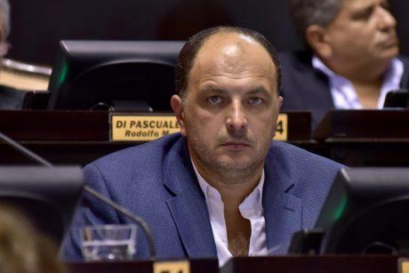 Garate, Pablo diputado Frente Renovador